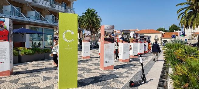 Imagem da notícia IEFP participa na Exposição 20 anos da Rede Social de Cascais